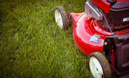 1-Month of Basic Lawn Maintenance (a $89 value) - Bentgrass Lawn & Landscaping in