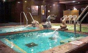 Up to 40% Off Spa Admission at King Spa and Sauna Chicago at King Spa and Sauna Chicago, plus 6.0% Cash Back from Ebates.