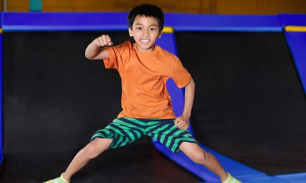 2Hr Trampoline and Ninja Warrior Course Entry: 1 $15 or 4 Ppl $50 at Sky High Indoor Trampoline Park Up to $76
