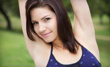 6 Laser Hair-Removal Treatments on a Small Area  - Sunsera Salon on Gray in Saskatoon