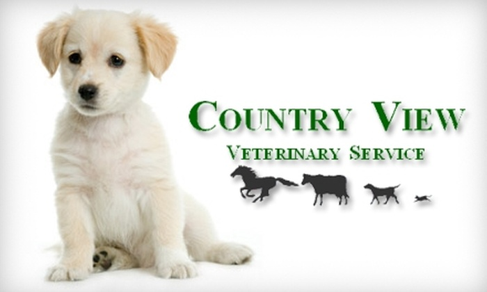 Country View Veterinary Service - Oregon: $22 for One Grooming Session ($50 Value), or $40 for Six-Week Obedience Class ($85 Value), or $40 for Five Days of Doggy Daycare (Up to $85 Value) at Country View Veterinary Service