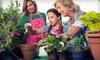 Half Off Organic Gardening Supplies in Royal Oak