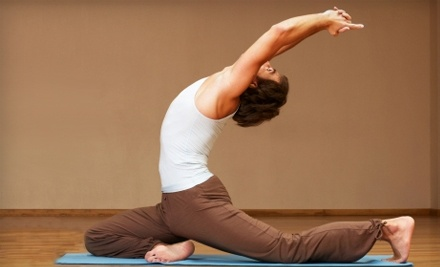 The Ayurvedic Path: One 60-Minute Personal Yoga Session - The Ayurvedic Path in Herndon