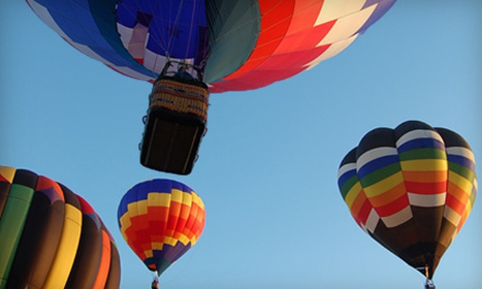 American Balloons - Land O Lakes: $110 for a One-Hour Hot Air Balloon Ride, Champagne, and Brunch from American Balloons in Land O' Lakes ($202.23 Value)