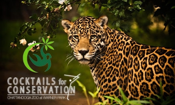 Chattanooga Zoo - Bushtown Neighborhood Association: $10 for One Ticket to the Cocktails for Conservation Event at the Chattanooga Zoo