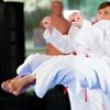 94% Off Taekwondo Class Packages from Go2Taekwondo Philadelphia