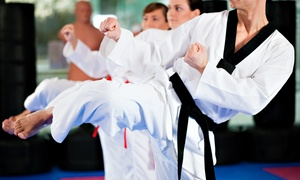 Go2Taekwondo Chicago: Taekwondo 10-Class Pass with Uniform and Option for Test and Graduation Belt from Go2Taekwondo Chicago (94% Off)