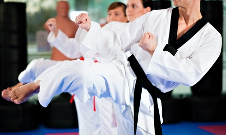 Taekwondo 10-Class Pass with Uniform and Option for Test and Graduation Belt from Go2Taekwondo Houston (94% Off)