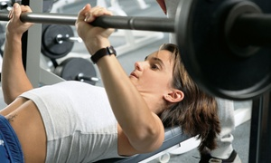 The Bar Milton Strength & Conditioning: $50 for Four Personal-Training Sessions at The Bar Milton Strength & Conditioning ($156 Value)
