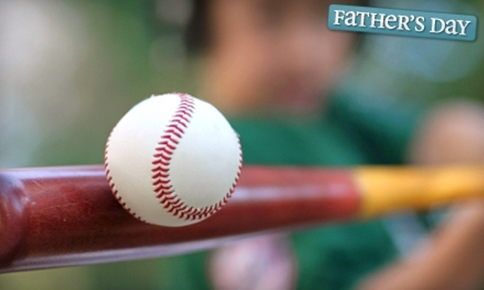 Next Level Baseball - Tallahassee: $20 for Five Large Buckets of Batting Cage Balls at Next Level Baseball ($40 Value)