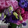 53% Off at In Bloom New York