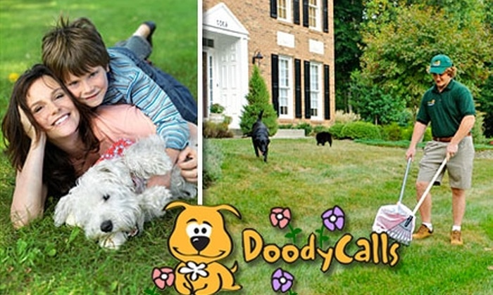 DoodyCalls - St Louis: $22 Pet-Waste-Removal Yard Cleaning from DoodyCalls (Average $60 Value)