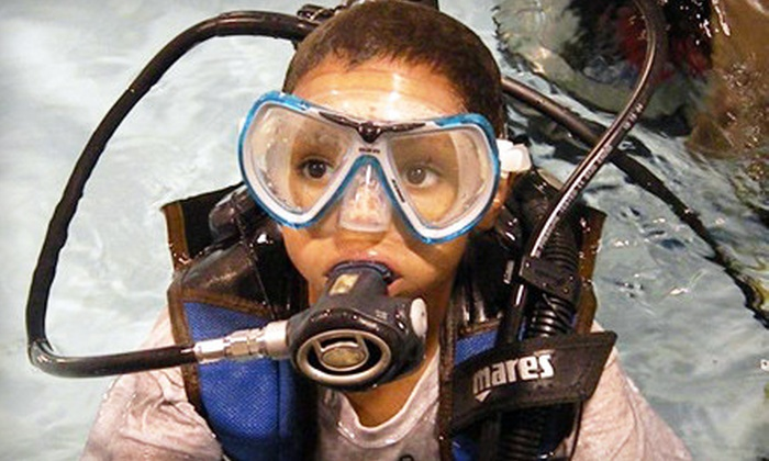 Central Coast Dive Center - Edgewood: $225 for an Open-Water Scuba-Diving Certification Package at Central Coast Dive Center in Edgewood ($524 Value)