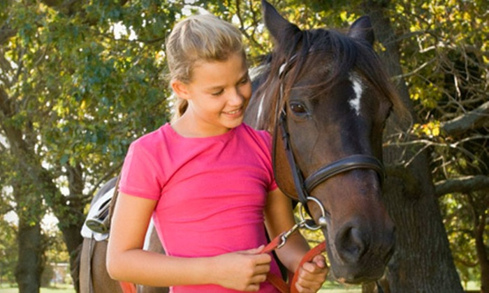 Lone Star Horsemanship, Inc. - Tomball: Two or Four 60-Minute Horseback-Riding Lessons at Lone Star Horsemanship, Inc. in Tomball (Up to 53% Off)