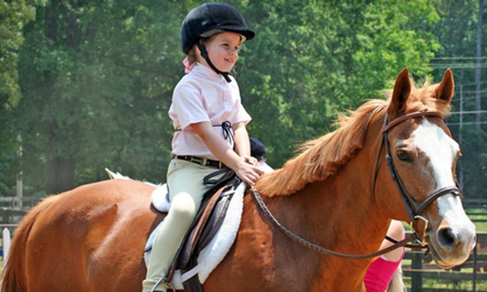 Towne Lake Equestrian Club - Woodstock: Two or Six Half-Hour Riding Lessons or Three One-Hour Lessons at Towne Lake Equestrian Club in Woodstock (Up to 62% Off)