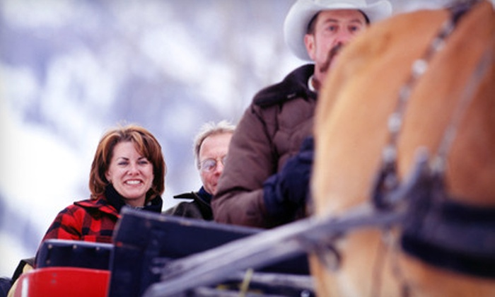 Circle B Ranch - Chester: 30-Minute Sleigh Ride for Two or 60-Minute Trail Ride for Two or Four at Circle B Ranch in Chestertown (Up to 51% Off)