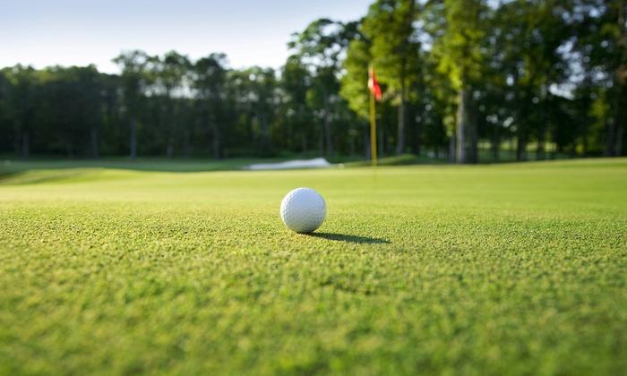 Scott Hogan Golf Academy - Crest Hill: One-Day Golf Lesson from Scott Hogan Golf Academy (56% Off)