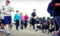 Up to 53% Off Big Backyard 5K  at  Big Backyard 5K Presented by Group Health