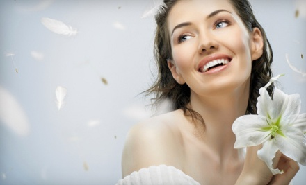 Choice of 3 Facials (up to $225 value) - Natasha's Queen Bee Spa in Whitinsville