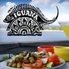 $10 Toward Mexican Fare at Iguana Grill