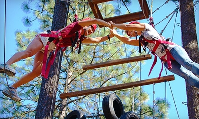 Adventure Dynamics - Nine Mile Falls: $25 for a 3-Hour High Adventure with Zip Line, Obstacle Course, Giant Swing, and More at Adventure Dynamics ($50 Value)