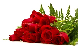 La Bottega Fiorita: La Bottega Fiorita - Una pianta, 15 rose o composizione di fiori (sconto fino a 92%)