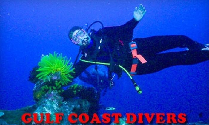 Gulf Coast Divers - Bolton: $12 for an Introductory Scuba-Diving Class at Gulf Coast Divers ($24 Value)