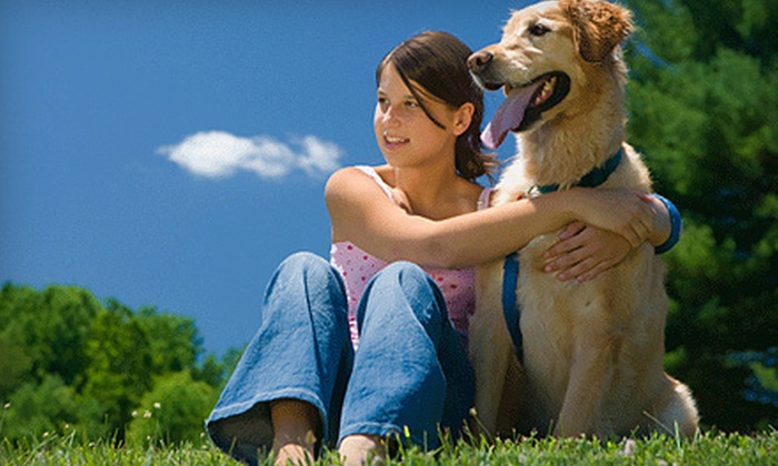 Pet Vaccination Services - Multiple Locations: $25 for Canine Vaccinations and Heartworm Test from Pet Vaccination Services ($50 Value)