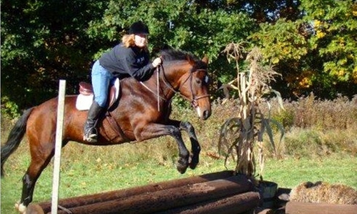 Patch Wood Farm - Sandown: $40 for Two Private Riding Lessons or One Group Polo Lesson at Patch Wood Farm in Sandown, New Hampshire (Up to $90 value)