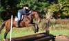 Patch Wood farms - Sandown: $40 for Two Private Riding Lessons or One Group Polo Lesson at Patch Wood Farm in Sandown, New Hampshire (Up to $90 value)