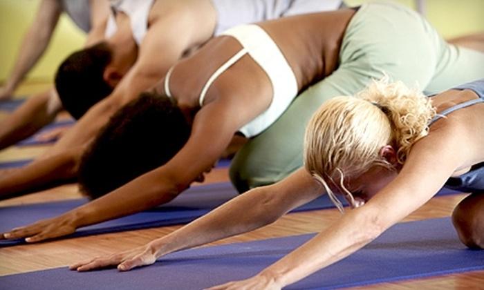 Yin Yang Pilates & Yoga - Lake Zurich: 10 Fitness Classes or Three Private Pilates Lessons at Yin Yang Pilates & Yoga in Lake Zurich