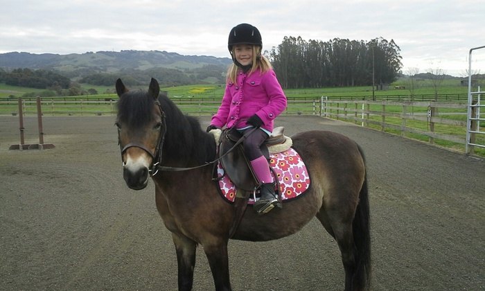 Strides Riding Academy - Petaluma: Up to 51% Off pony lessons at Strides Riding Academy