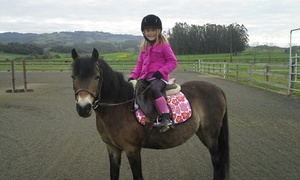 Strides Riding Academy: Up to 51% Off pony lessons at Strides Riding Academy