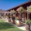 Half Off Wine Outing at Cathedral Ridge Winery