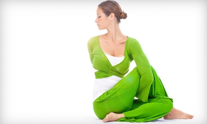 Himalayan Yoga and Meditation Center - Palatine: $49 for 10-Class Pass to Himalayan Yoga and Meditation Center in Palatine (Up to $120 Value)