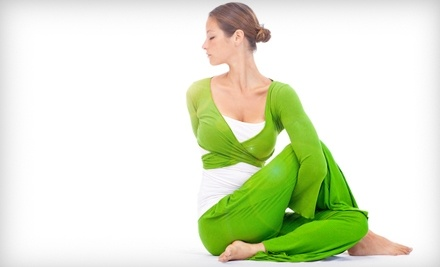Himalayan Yoga and Meditation Center - Himalayan Yoga and Meditation Center in Palatine