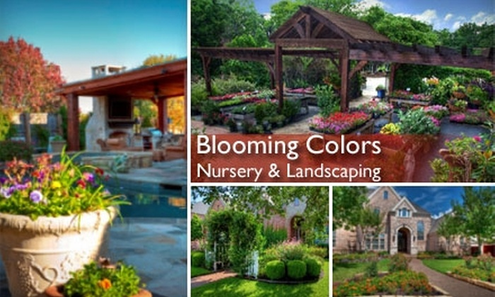 Blooming Colors Nursery & Landscaping - Grapevine: $15 for $35 Worth of Plants, Products, and More at Blooming Colors Nursery & Landscaping