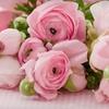 Half Off Arrangements at Victoria Flower Company
