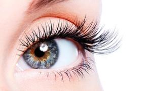 Beauty Basic: Full Set of Natural Eyelashes from £18.95 at Beauty Basic (Up to 71% Off)