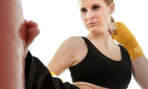 Maryland Mixed Martial Arts: 5 or 10 Drop-In Muay Thai Burnout Fitness Classes at Maryland Mixed Martial Arts (Up to 81% Off)