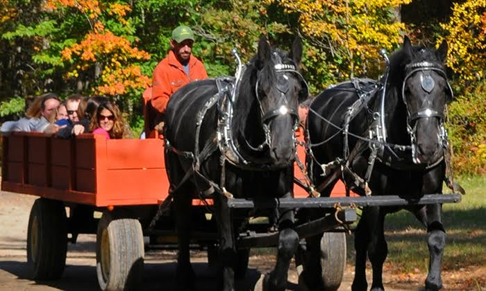 Charmingfare Farm - Charmingfare Farm: $14 for a Horse-Drawn Hay Ride for One at Charmingfare Farm ($25 Value)