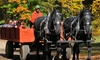 Charmingfare Farm - South Hooksett: $14 for a Horse-Drawn Hay Ride for One at Charmingfare Farm ($25 Value)