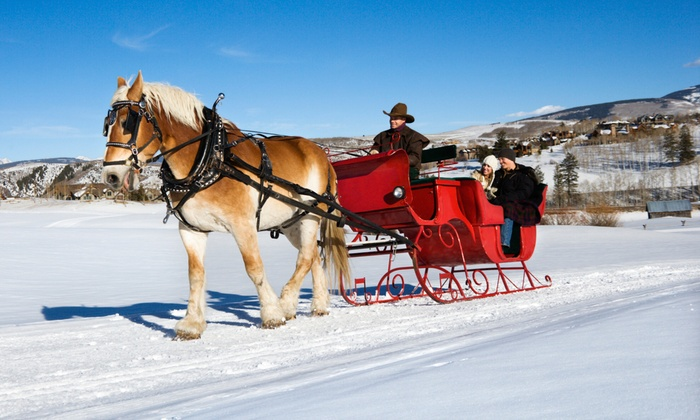 Cornerstone Ranch - Cornerstone Ranch: Group Sleigh or Wagon Ride for Two or Four, or Private Ride for Four from Cornerstone Ranch (Up to 54% Off)