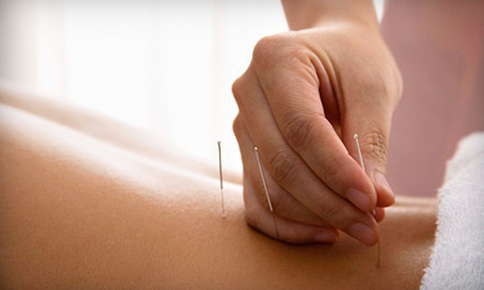 12 Meridians Acupuncture - Northern Woods: One or Three Acupuncture Sessions with Consultation and Acugraph Screening at 12 Meridians Acupuncture (Up to 71% Off)