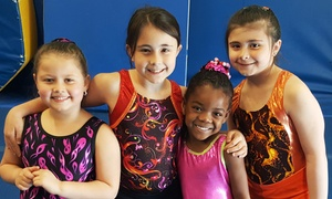 Gymnastics for kid's, Julie's gym: One Month of 60- or 90-Minute Gymnastics Classes or Two-Hour Drop-In Classes at Julie's Gym(Up to 56% Off)
