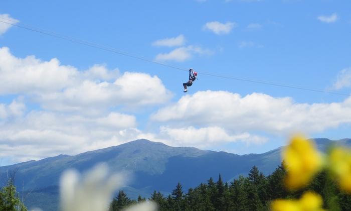 Mount Washington Resort - Bretton Woods: $99 for a Bretton Woods Canopy Tour at Mount Washington Resort ($220 Value)