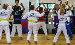 Legend Martial Arts Academy: 10 or 15 Martial-Arts Classes or Kids Karate Birthday at Legend Martial Arts Academy (Up to 91% Off)