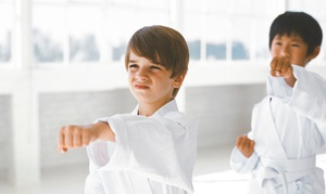 Palm Beach Chikubu-Kai Dojo: $63 for $125 Worth of Martial-Arts Lessons at Palm Beach Chikubu-Kai Dojo