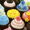 Up to 52% Off Cupcakes from Ladybug Cake Creations