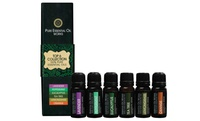 GROUPON: Pure Essential Oil Works Top-Six Collection Pure Essential Oil Works Top-Six Collection